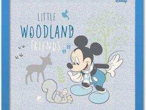 Μικροί φίλοι του δάσους, Mickey Mouse! Παιδικά Πίνακες σε καμβά 40 x 40 εκ.