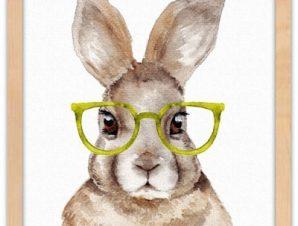 Κουνελάκι με πράσινα γυαλιά Παιδικά Πίνακες σε καμβά 40 x 40 εκ.